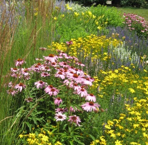 Creating a butterfly garden design for Butterfly garden plans designs