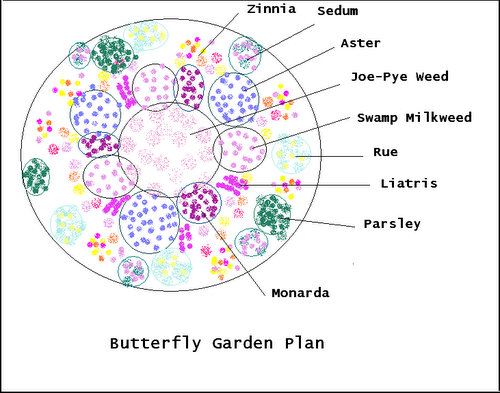 Butterfly garden plants for Butterfly garden plans designs