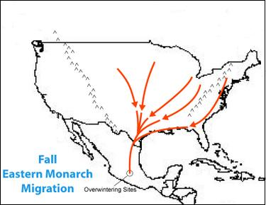 monarch migration map