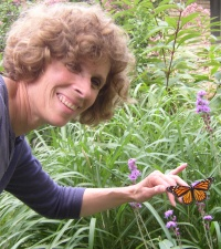 Releasing Monarch Butterfly on Flower